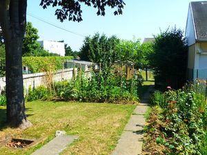 1 Backyard garden