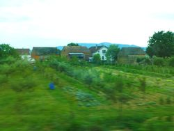 7 Homes & gardens