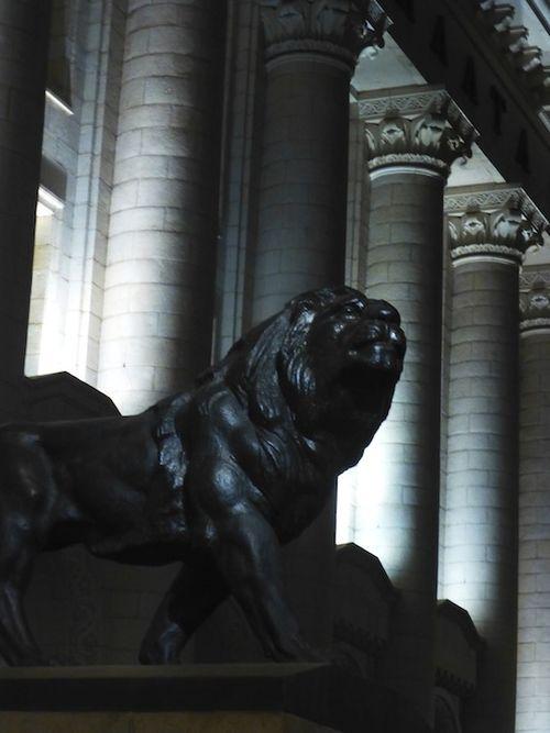 76 Lion at night