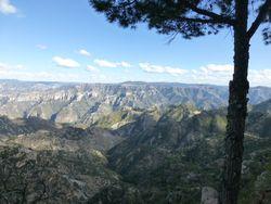 50 Canyon