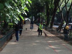 1b Street park