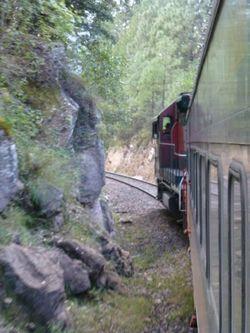 90 Train